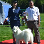 Liza 9 months old winning Puppy BIG!