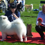 Liza winning Puppy Best In Show!