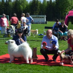 Liza at her last puppy show winning Best in Show